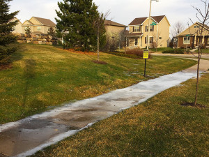 Water Drainage Issue at Park